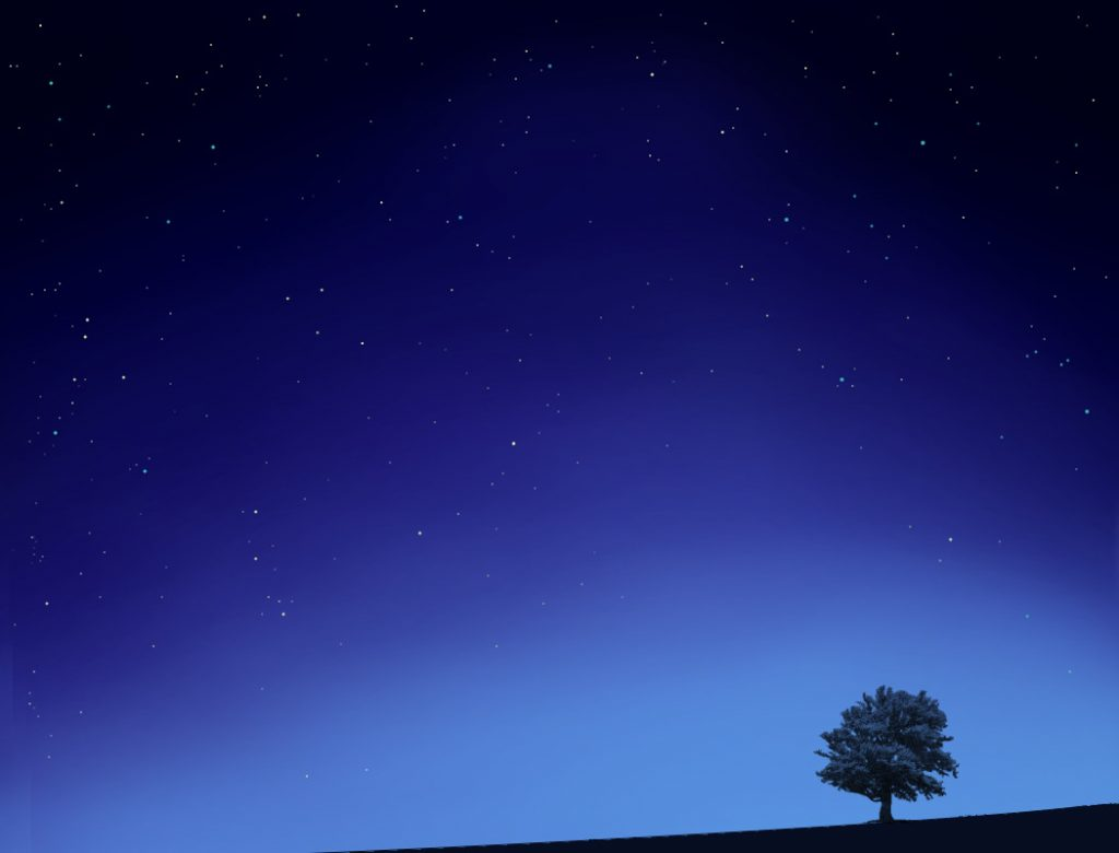 star-tree