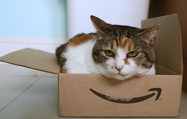 Amazon段ボールの中に入る猫